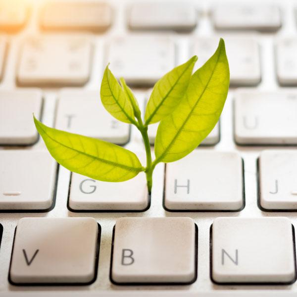 digitalisierung-und-nachhaltigkeit-Titel