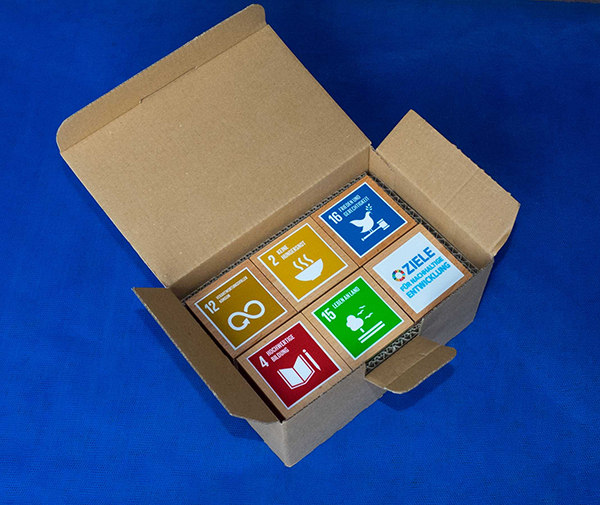 SDG-Bild-3b